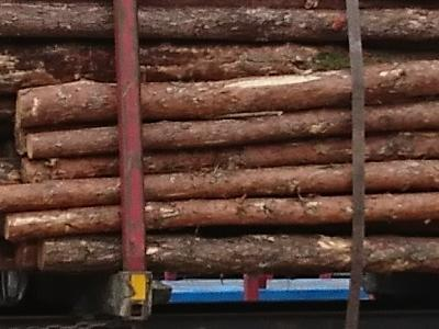 bale drewna